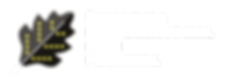 SHIFF LOGO 2019 NOVO_logo eng  opshti lo