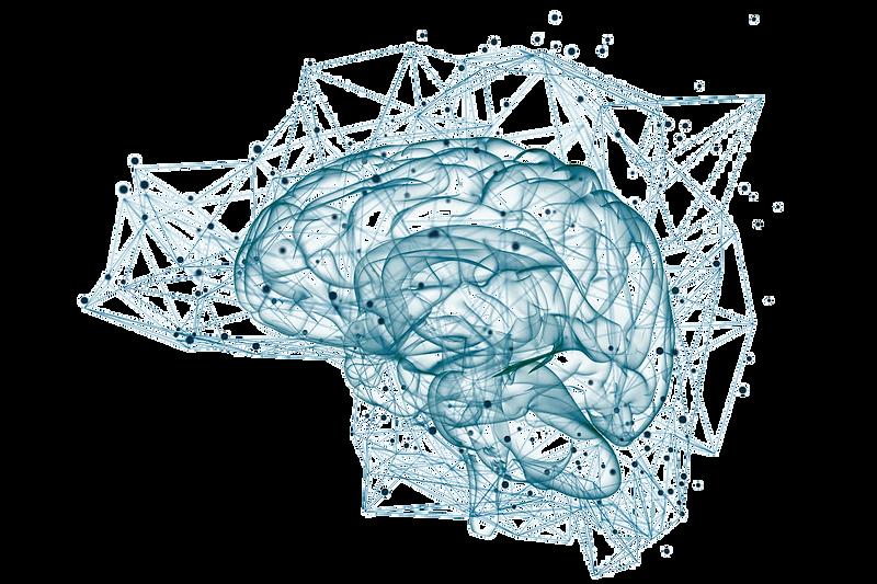 vârsta-creierului-cât-mai-ai-de-trăit-1.