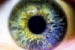 iridologie à Bons en chablais