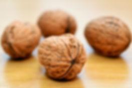 walnuts-552975_1920.jpg