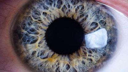 iris miroir de l'intérieur