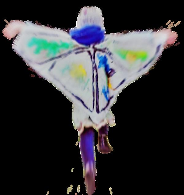 butterflyrun1blur2.png