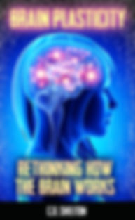 BrainPlasticity_V1.jpg