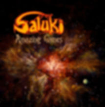 Saluki-coverfront.jpg