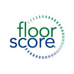 floorscore.jpg