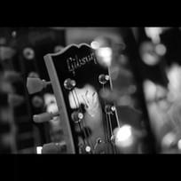 The Wild Things - Loaded Gun GUITARS.jpg