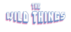 twt_logo.png