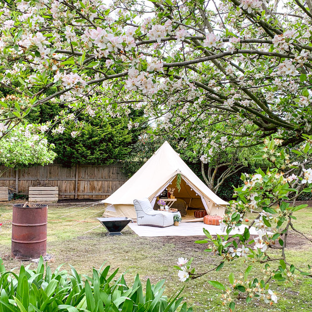 Private TIPI Experience