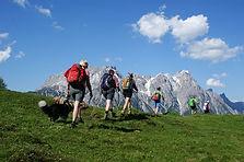 Wiesen-Berge.jpg