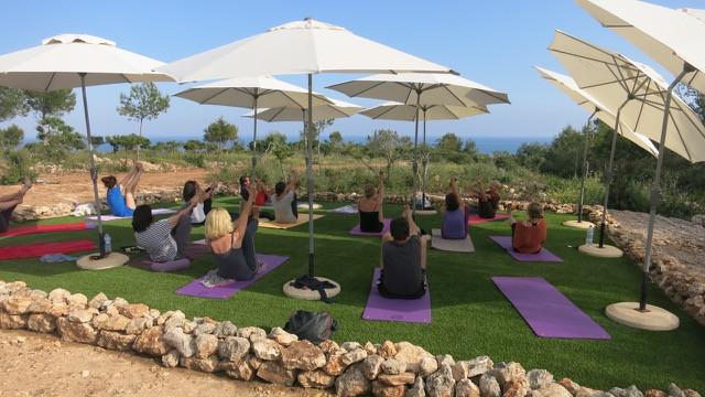 Algarve Paradiesvogel.jpeg