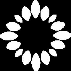 Balance Life Coaching Logo