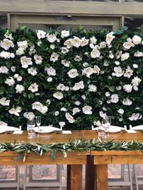 Magnolia Wall
