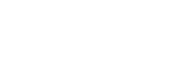 VP_watermark_.png