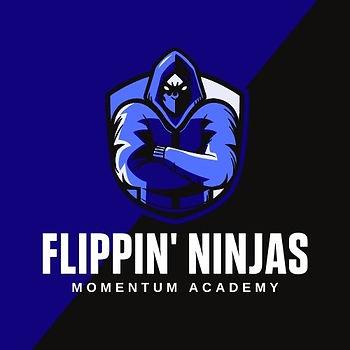 flippin' ninjas.jpg