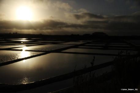 Saline tides in Bretagne