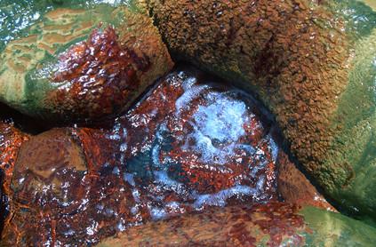 Geyser in Madagascar