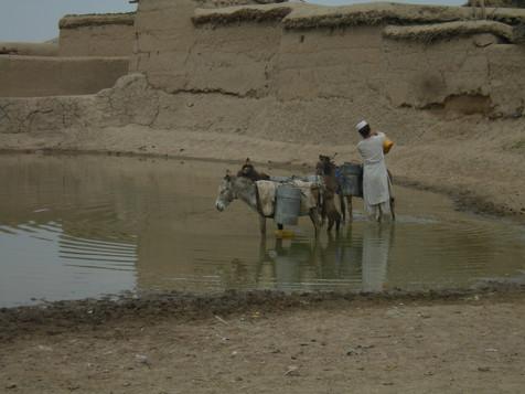 Afgha_2011_ 570.jpg