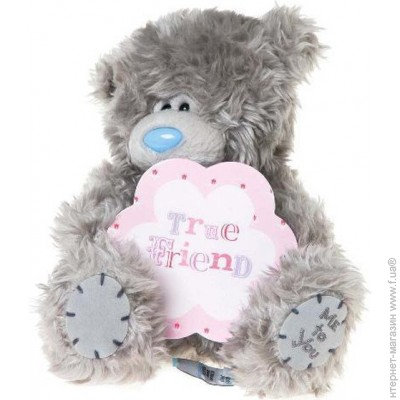 Carte Blanche G01W3174 Мишка Teddy True Friends 18 см   ME TO YOU