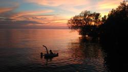 Sunset image for banner