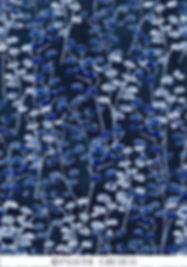 blue night forest klein logo .jpg