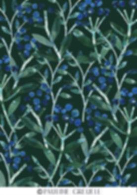 blueberry bounty kleinkopie.jpg