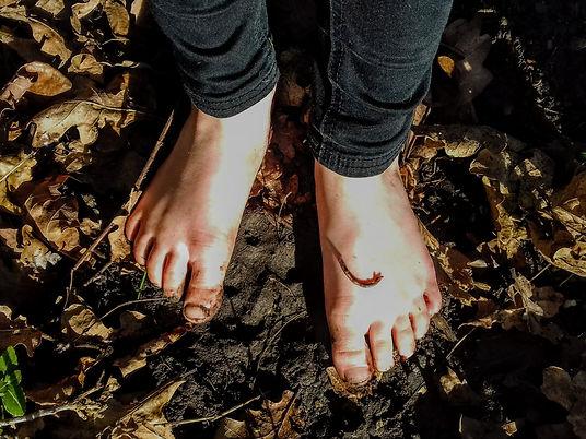 img_barefoot-safari.jpeg