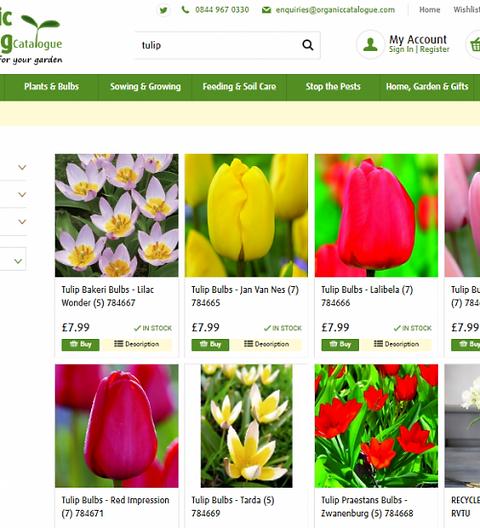 organic_tulips-500x550.png