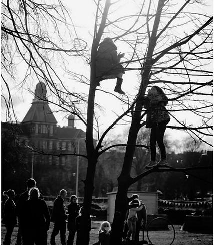 tree-fruit-481x550.png