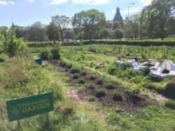 community-garden-300x225