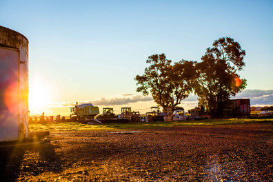web_farm sunset late august-8.jpg