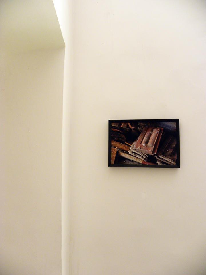 Sonia Andresano, Mosca Bianca, 2018, fotografia, stampa su carta hahnemühle matt fibre montata su forex, cornice in legno, 53x36 cm