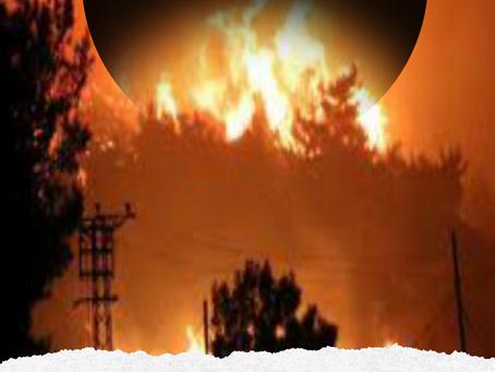 Yangınlar için Teknoloji Alanında neler yapılabilir.