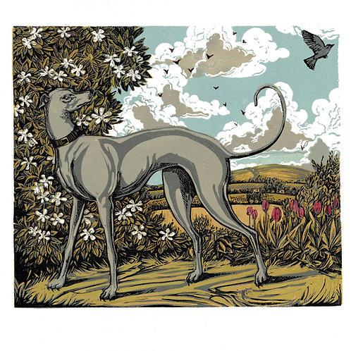 Jean's Hound lino print