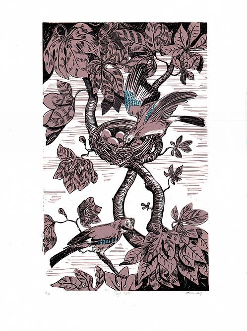 Jay's nest lino print