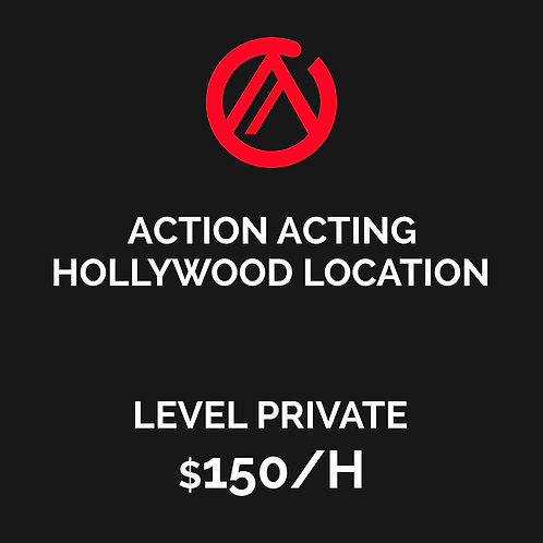 PRIVATE CLASS ACTION ACTING MASTER WORKSHOP - HOLLYWOOD LOCATION