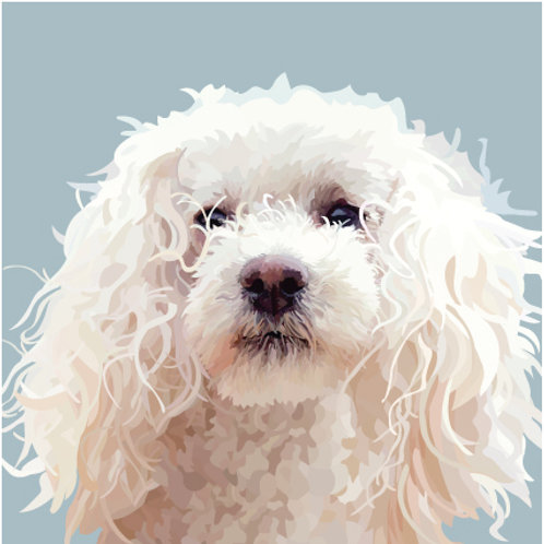 Fluffy Poodle Greeting Card
