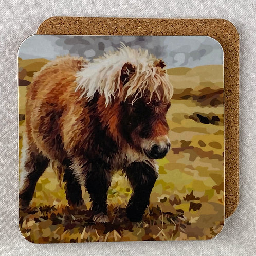 Shetland Pony Coaster Set