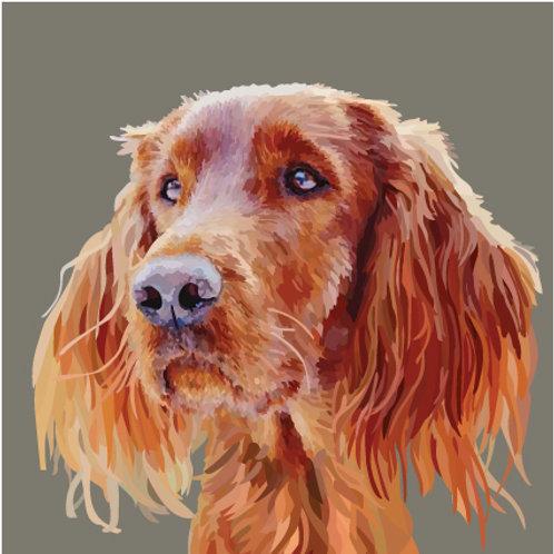 Red Setter / Irish Setter dog Greeting Card