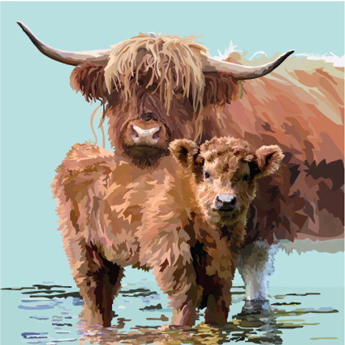 Highland calf and cow in water Greeting Card