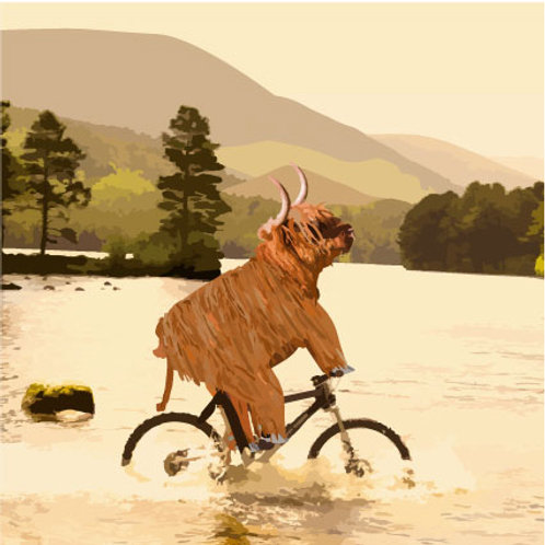 cycling cow into water Greeting Card