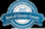 DNL 2019 logo transparent.png