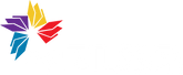 Logo myELSA White.png