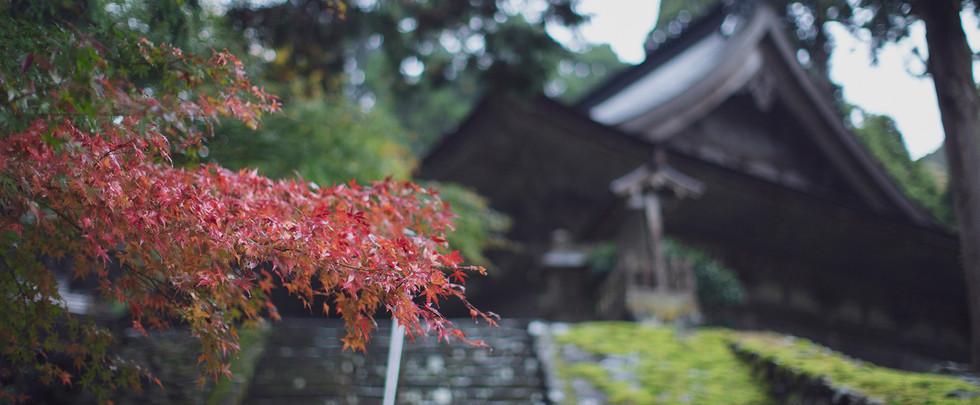 静寂に満ちた明通寺でひとり