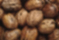 wet_walnuts_new_website_gallery_test.jpg