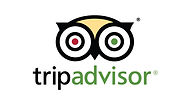 tripadvisor-icon-vector-3.jpg