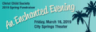 CCSA Banner-07.jpg