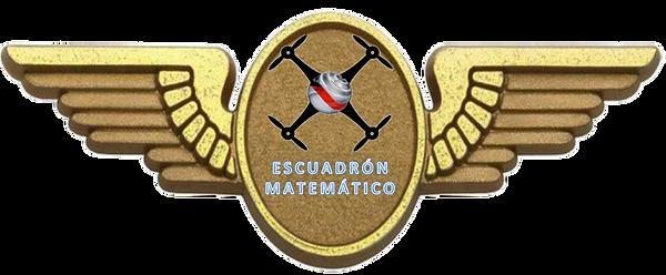 LOGO ESCUADRON.png
