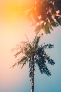 Summer summer summer time! Here is volume 1 of my multi-part series of summer vibes pictures to get you in the mood to have the best summer yet. We have summer vibes adventure pictures, summer vibe outfits, summer night photos, aesthetic wallpaper ideas, & tons of good energy. #summer #summertime #summervibes #photography #beautiful #photooftheday #photos #picoftheday #pic #pictureoftheday #picture #photo #sun #color #colorful #outdoor #aesthetic #evening #night #wallpapers #warm #nature #sunset