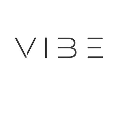 logo design vibe copy 2.jpg