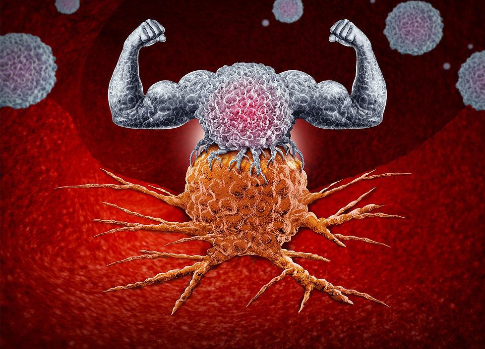Immunsystem.jpg